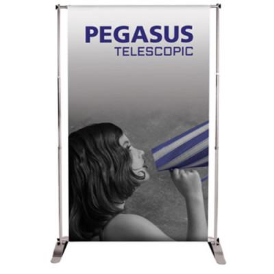 Pegasus_silver
